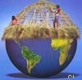 Thatched Amazon Globe